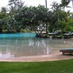piscina laghetto aspetto naturale
