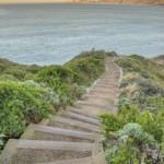 terra stabilizzata ecostabilizer -scalinata