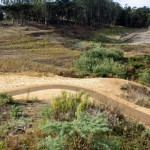 Bioparco-stradello in terra stabilizzata